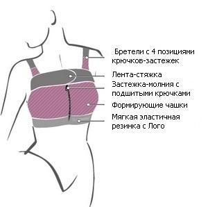 Состав компрессионного белья после маммопластики